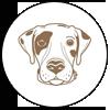 Hondos Logo